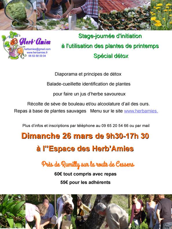 stage et repas aux plantes sauvages en Haute Savoie