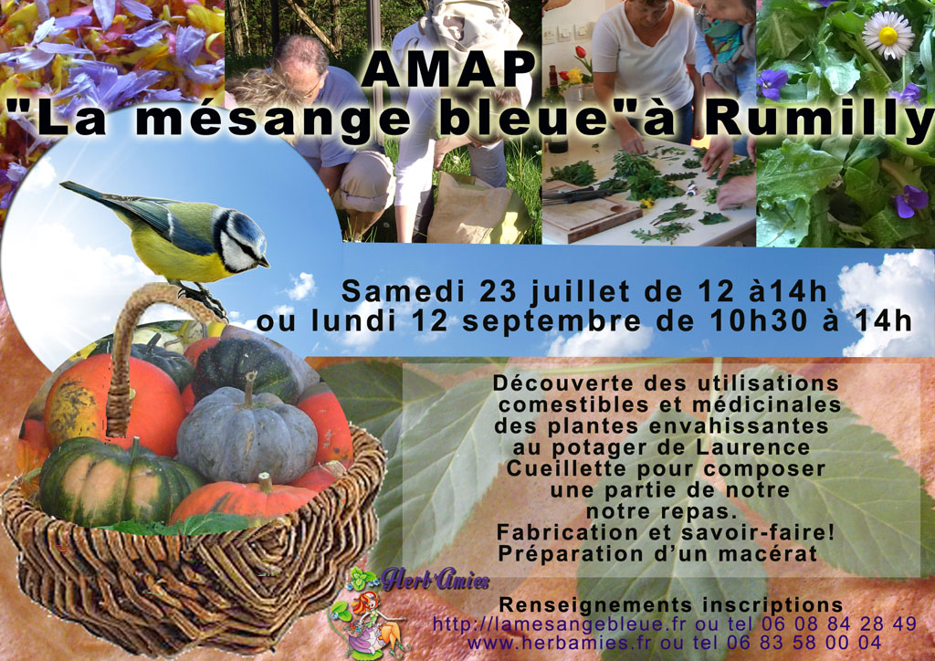 Amap-tract juillet2016